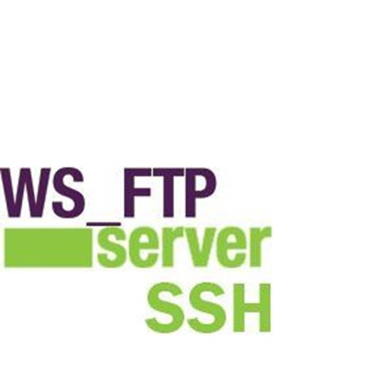 WS_FTP Server with SSH + 2 Year Support